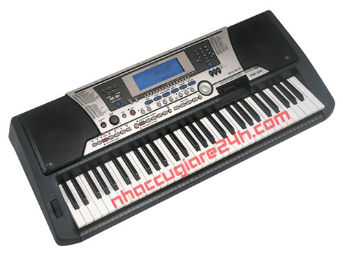 Đàn Organ YAMAHA Psr 550 đã qua sử dụng
